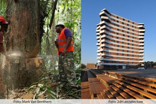 International konference for tropisk træ i Aarhus