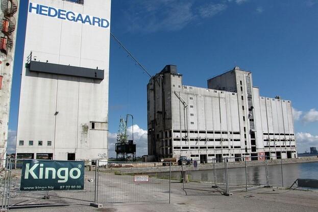 Kingo har allerede været involveret i mange projekter i Nordjylland. Nu går de skridtet videre og etablerer en afdeling i Aalborg. Foto: Kingo.