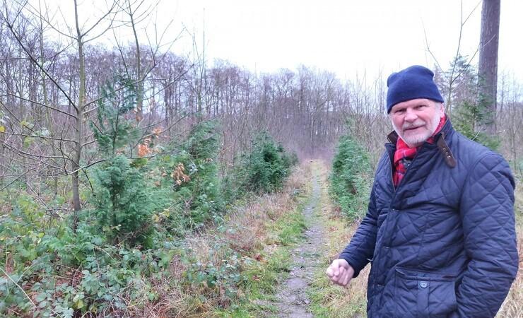 Professionel skovdrift og vildtpleje går hånd i hånd