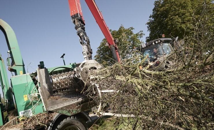 Biomasse og bæredygtighed er centralt for arbejdet i DM&E Skov