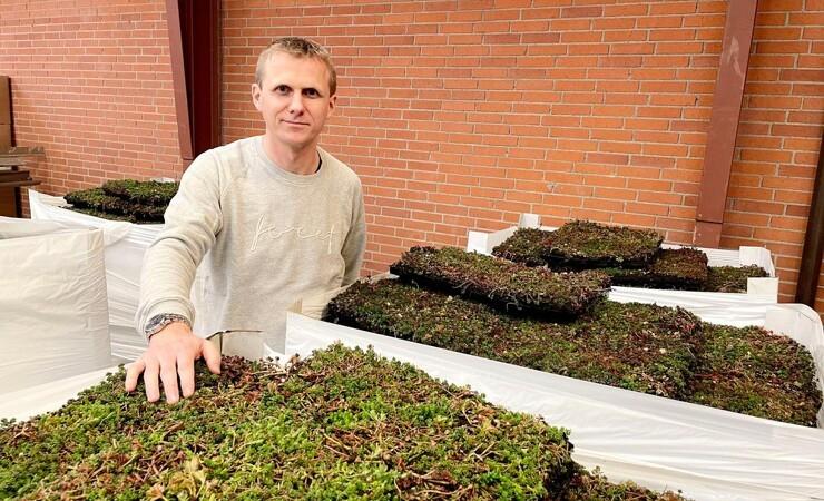 Nye tiltag gav succes for leverandør af grønne tage og vægge