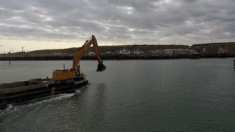 Fede catte på havnearbejde